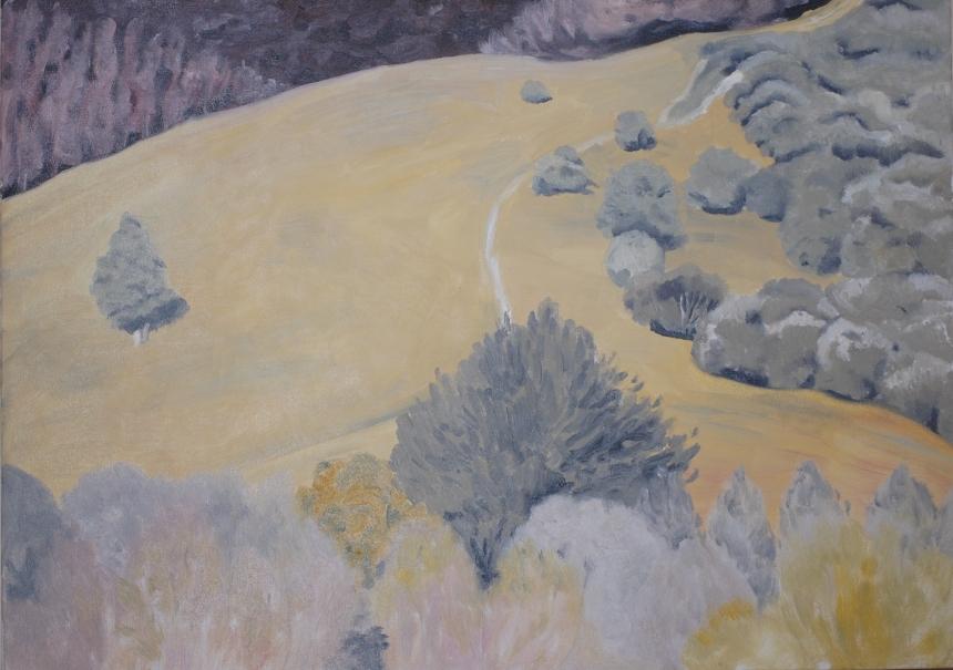 Paparimu Hillside