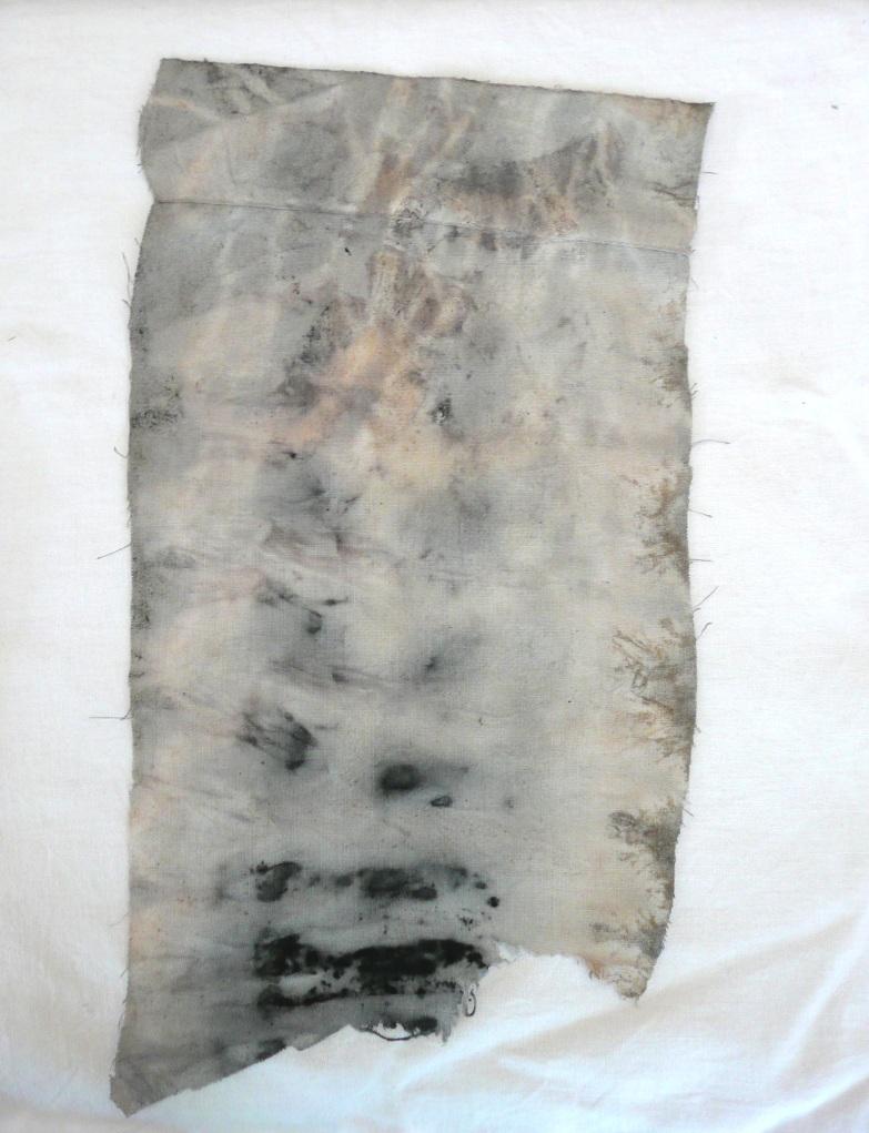 Eucalyptus cotton iron