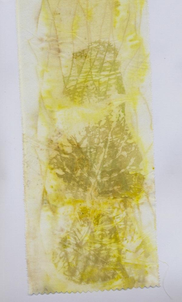 Poplar print