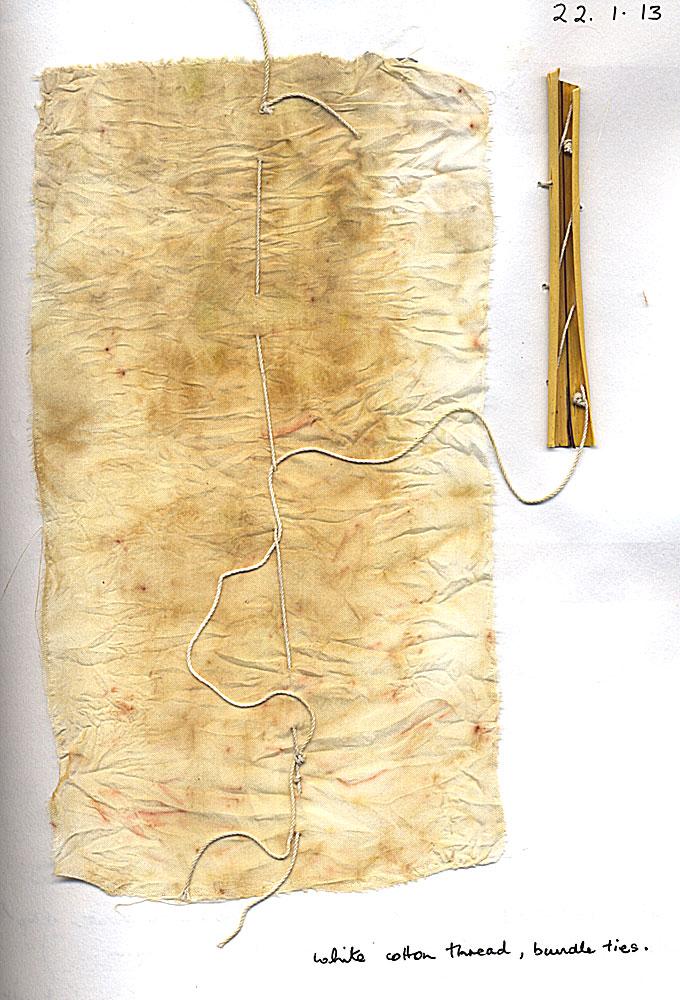 P-cookianum-silk