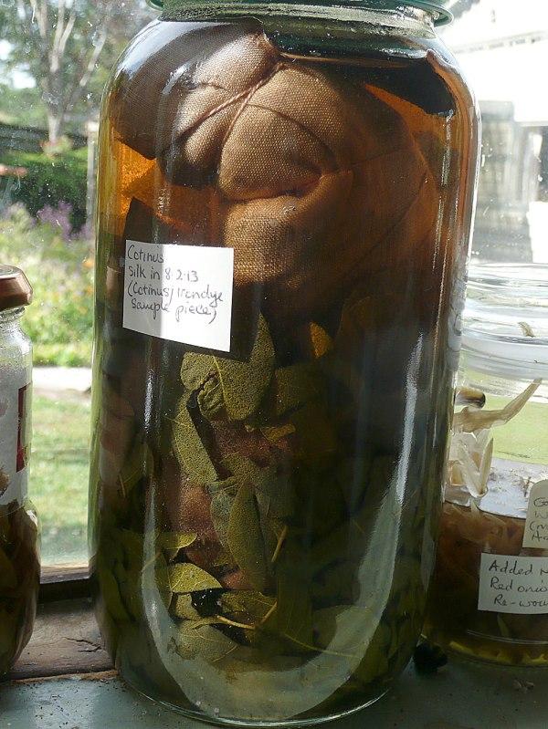 Linen-cotinus-sequoia