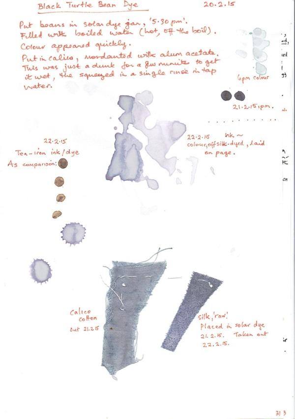 Turtle-Bean-dye-test-page